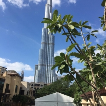 EMAAR Tent Rental Project 3